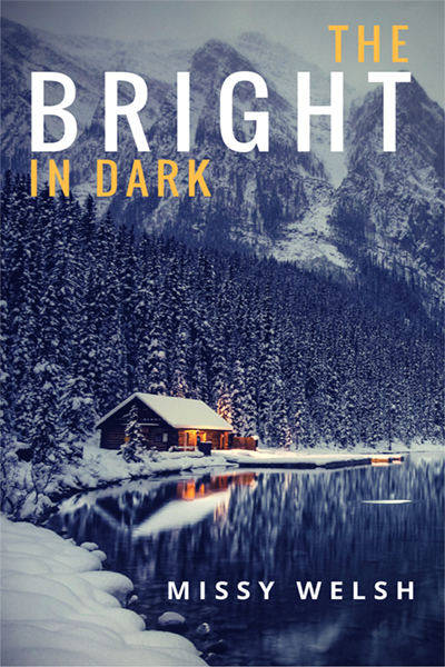 The Bright in Dark by Missy Welsh
